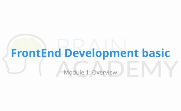 frond end development qualium systems